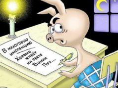 Налоги ИП на ЕНВД